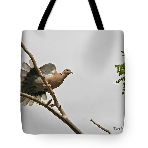 Tote Bag featuring the photograph The New Dove In Town by Tom Janca