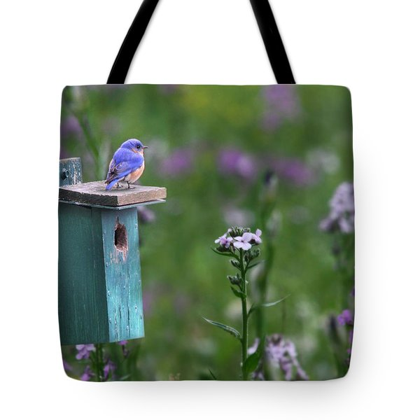 The New Landlord Tote Bag by Lori Deiter