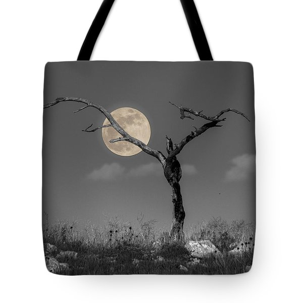 The Night Tote Bag