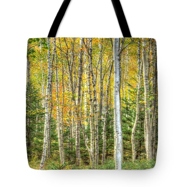 Tote Bag featuring the photograph The North Woods by Wanda Krack