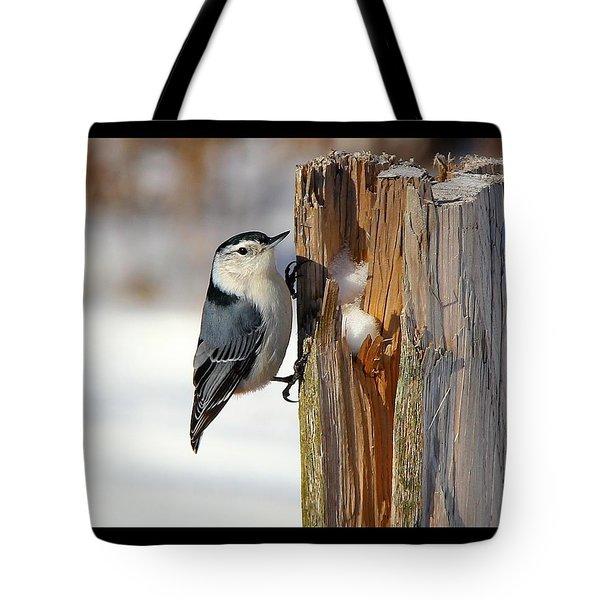 The Nut Cracker Tote Bag by Davandra Cribbie