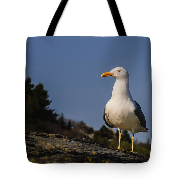 Tote Bag featuring the photograph The Observer by Mark Myhaver