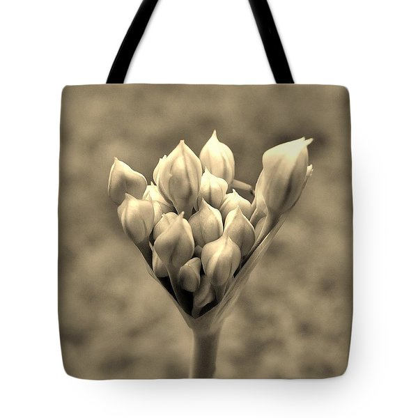 The Offering Tote Bag by Robert Geary