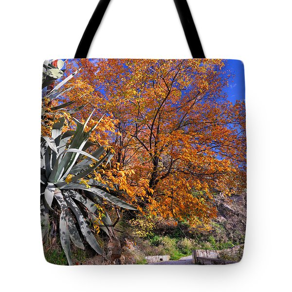 The Old Bridge In Automn Tote Bag by Guido Montanes Castillo