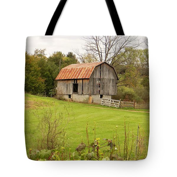 The Old Shed Tote Bag by Jean Goodwin Brooks