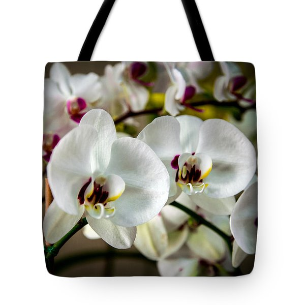 The Orchid Sisters And Backup Singers Tote Bag by John Haldane