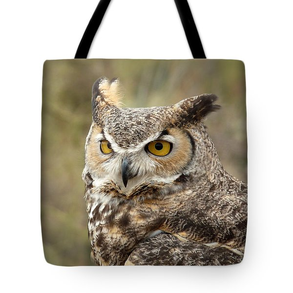 Tote Bag featuring the photograph The Owl by Lucinda Walter