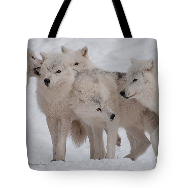 Tote Bag featuring the photograph The Pack by Bianca Nadeau