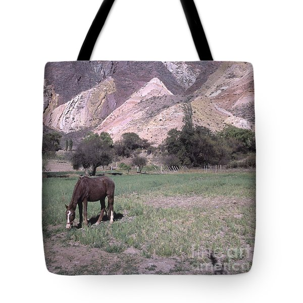 The Painters Palette Jujuy Argentina Tote Bag by James Brunker
