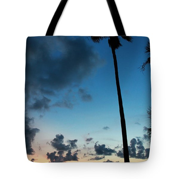 The Palm Majestic Sunset Beach Tarpon Springs Florida Tote Bag