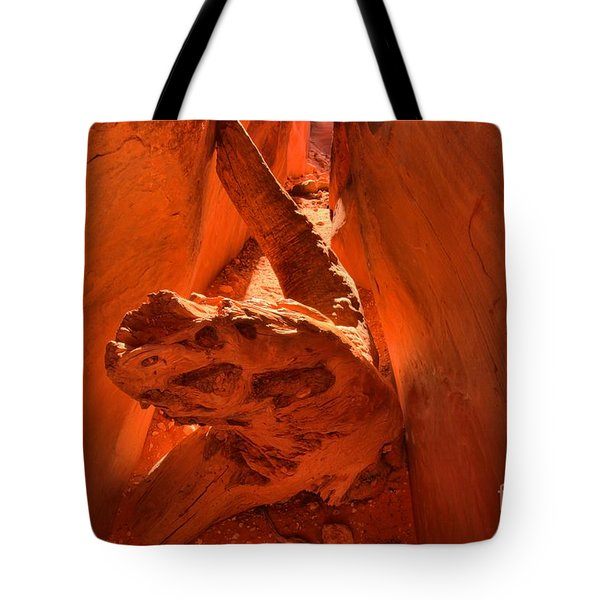 The Paria Dragon Tote Bag