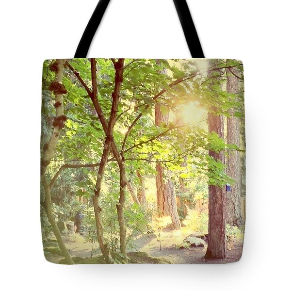The Path Of Light Tote Bag