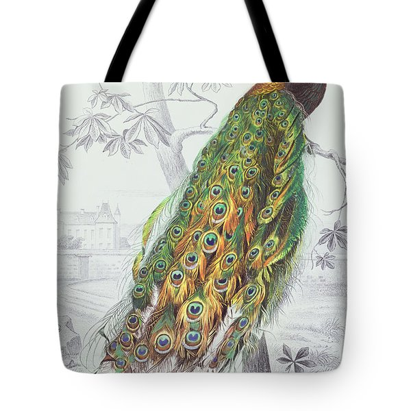 The Peacock Tote Bag by A Fournier