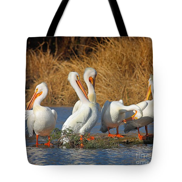 The Pelican Gang Tote Bag