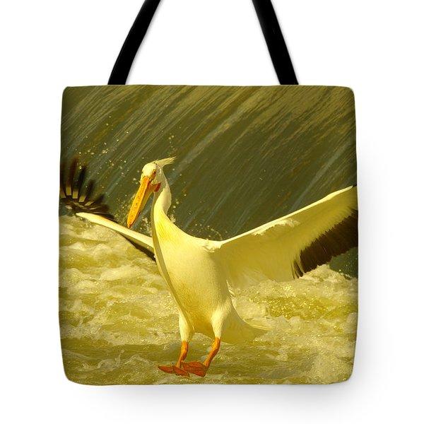 The Pelican Lands Tote Bag by Jeff Swan