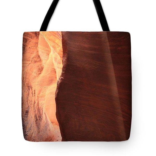 The Perfect Beam Tote Bag