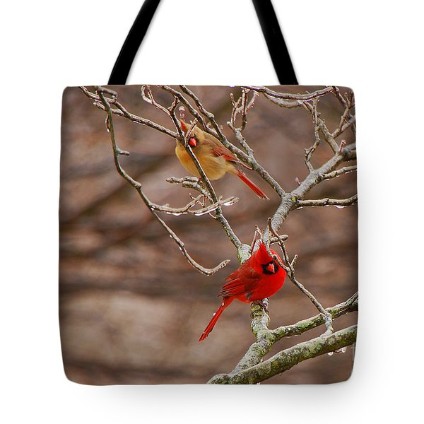 The Perfect Pair Tote Bag by Mary Carol Story