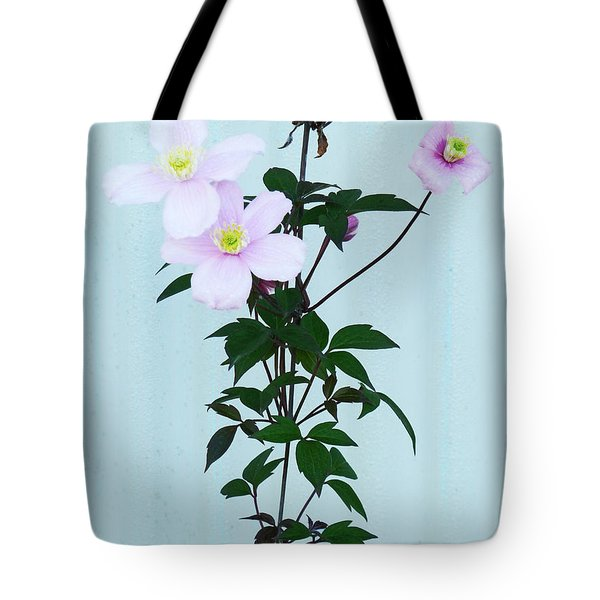 The Pink Clematis Tote Bag by Steve Taylor