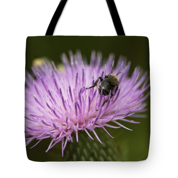 The Pollinator - Bee On Thistle  Tote Bag