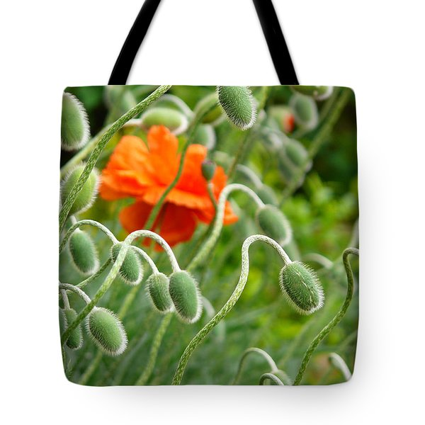 The Poppy Tote Bag by Evelyn Tambour