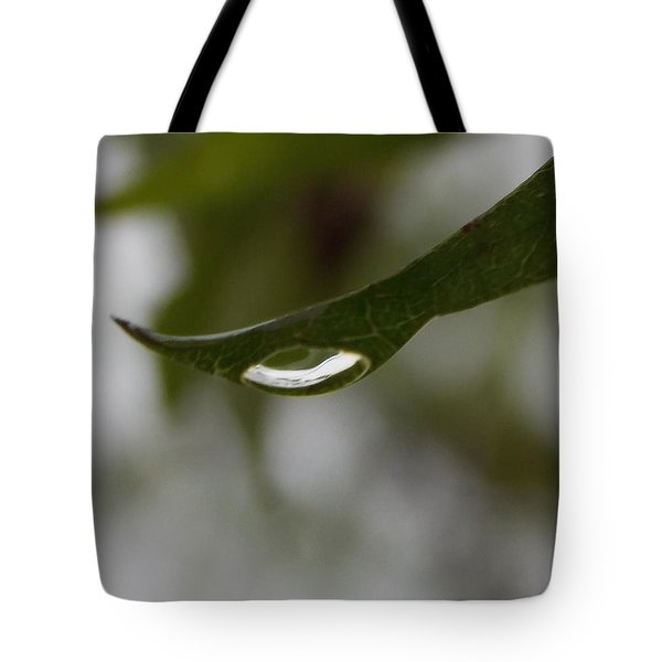 Perception Tote Bag by John Glass