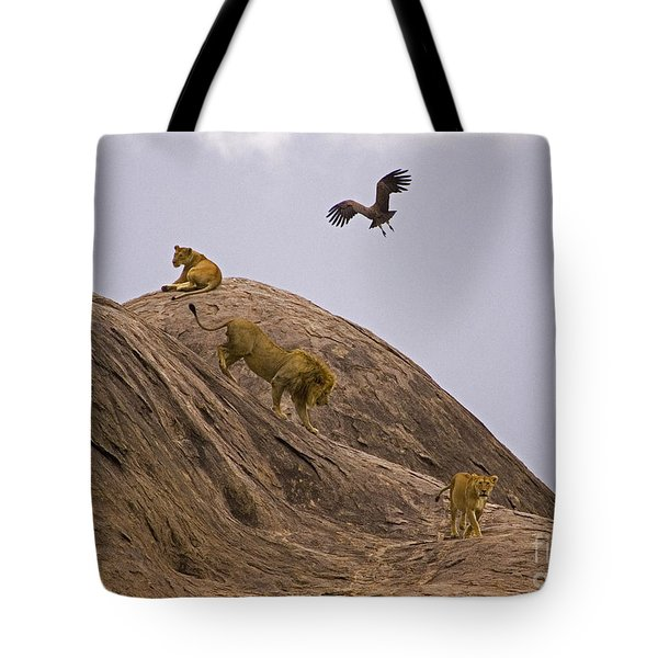 Tote Bag featuring the photograph The Pride by J L Woody Wooden