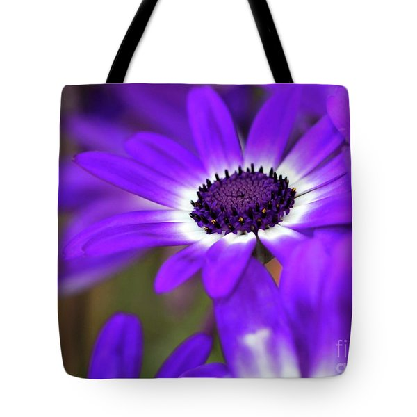 Tote Bag featuring the photograph The Purple Daisy by Sabrina L Ryan