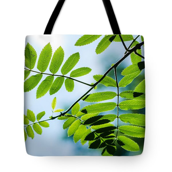The Rain Has Stopped Tote Bag by Alexander Senin