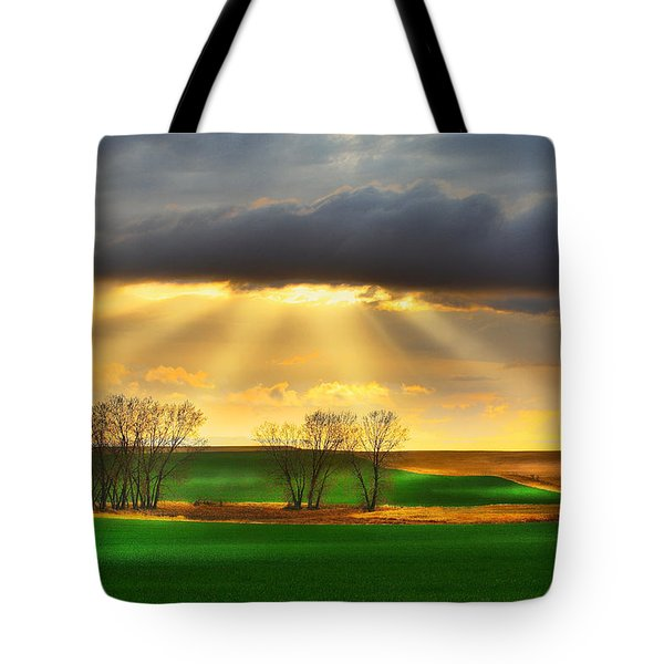 Tote Bag featuring the photograph The Ray Of Light by Kadek Susanto