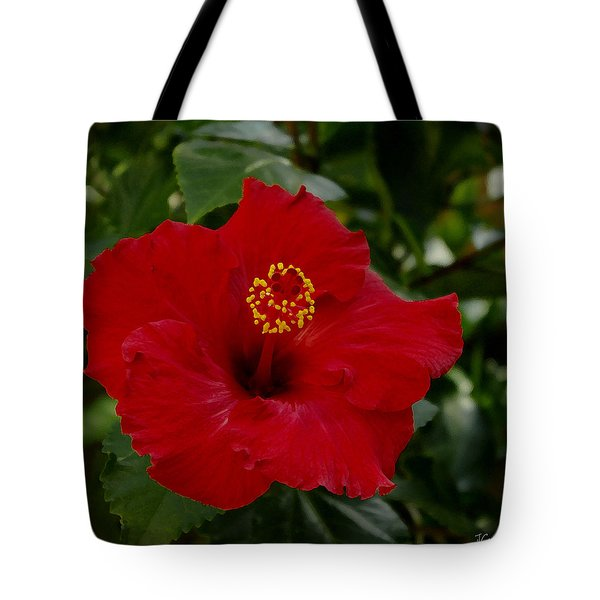 Tote Bag featuring the photograph  Red Hibiscus by James C Thomas