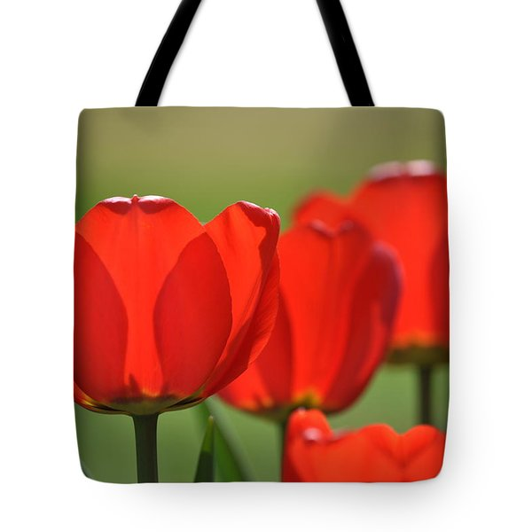 The Red Tulips Tote Bag