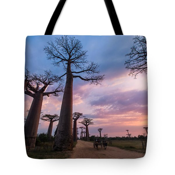 The Road To Morondava Tote Bag
