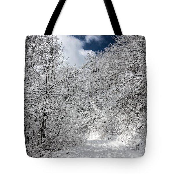 The Road To Winter Wonderland Tote Bag by John Haldane