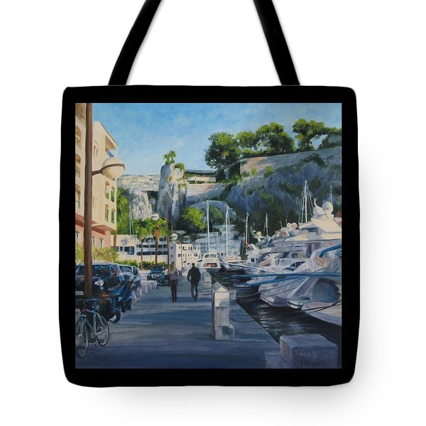 The Rock Ahead Tote Bag by Connie Schaertl