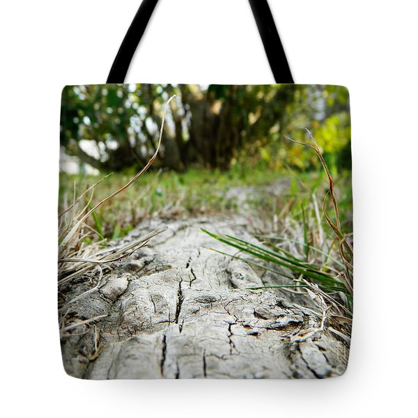 The Root Of Happiness Tote Bag by Andrea Anderegg