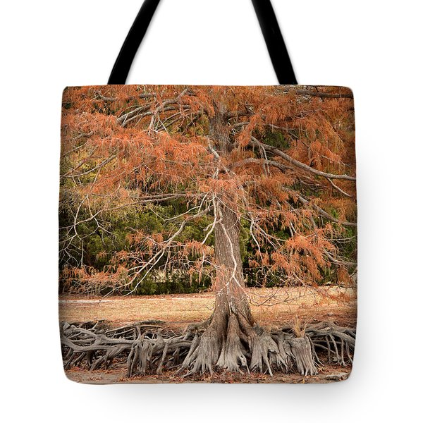 Tote Bag featuring the photograph The Root Of It All by Rebecca Davis