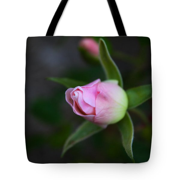 Tote Bag featuring the photograph The Rose Waits by Richard Stephen
