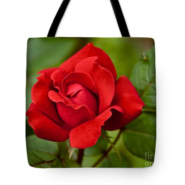 Tote Bag featuring the photograph The Rose by William Norton