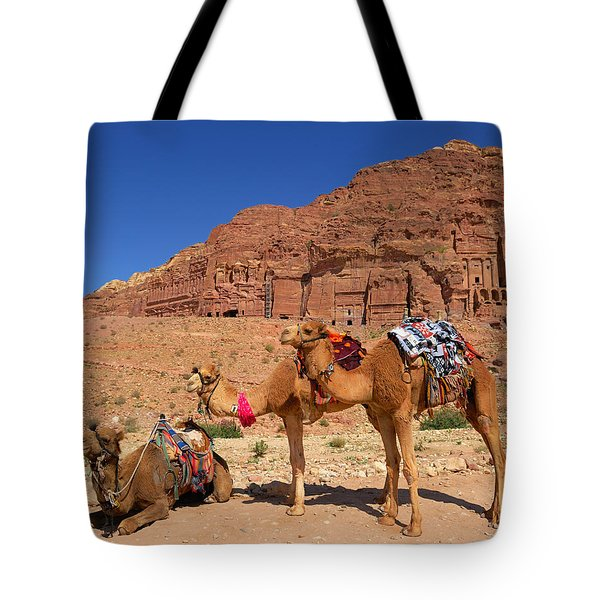 The Royal Tombs Tote Bag by Tony Beck
