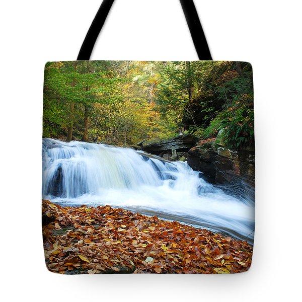 The Rushing Waterfall Tote Bag