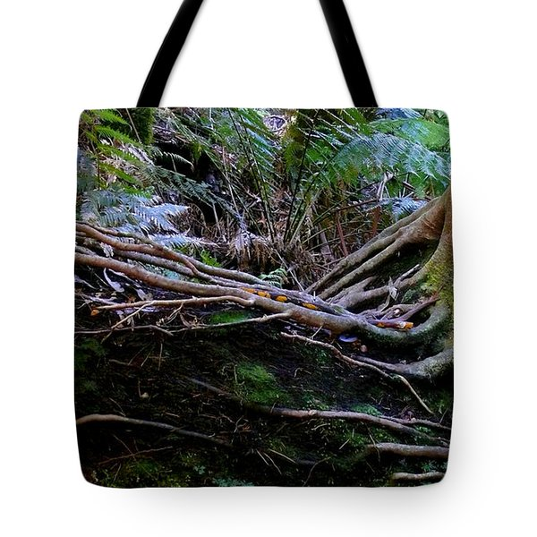 Tote Bag featuring the photograph The Salamander Tree by Evelyn Tambour