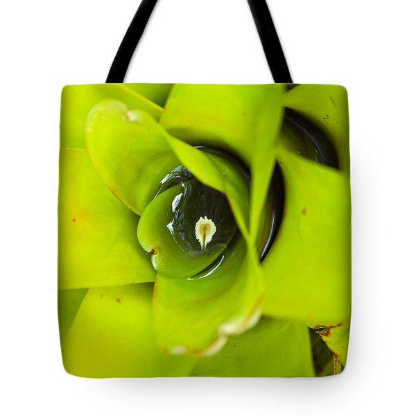 The Secret World In A Bromeliad Tote Bag by Karon Melillo DeVega