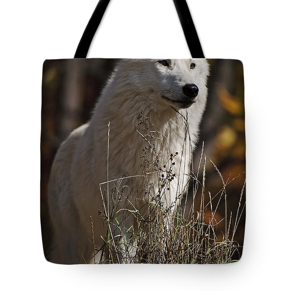 Tote Bag featuring the photograph The Sentinel by Wolves Only