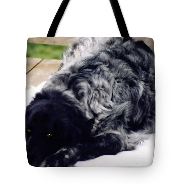The Shaggy Dog Named Shaddy Tote Bag by Marian Cates