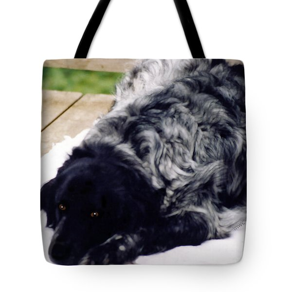 The Shaggy Dog Named Shaddy Tote Bag