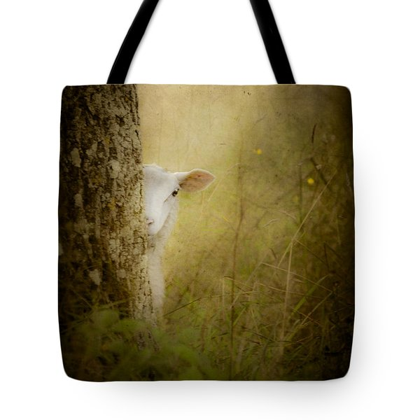 The Shy Lamb Tote Bag by Loriental Photography
