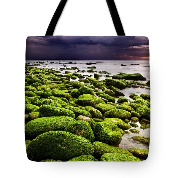 The Silence After The Storm Tote Bag by Jorge Maia