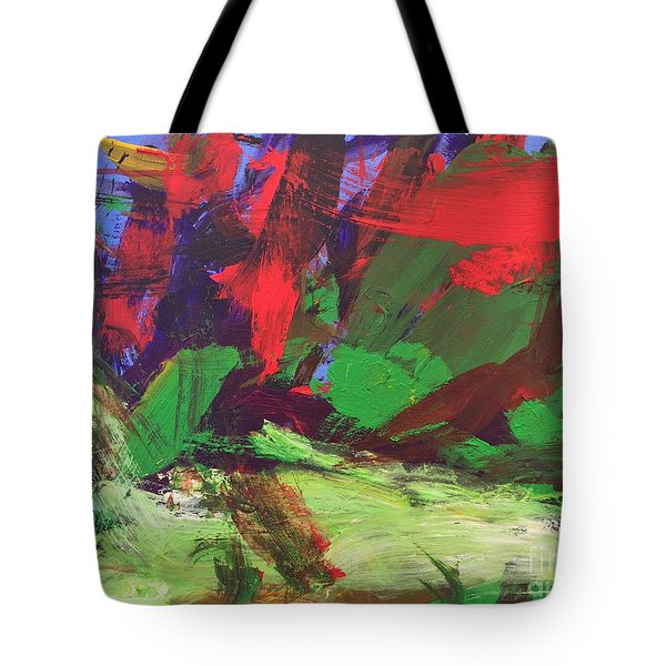 The Sky Tote Bag by Donald J Ryker III