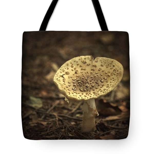 The Slow Passing Of Autumn Tote Bag
