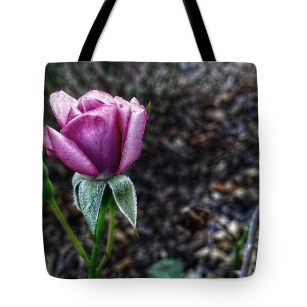 The Solitary One Tote Bag by Linda Unger
